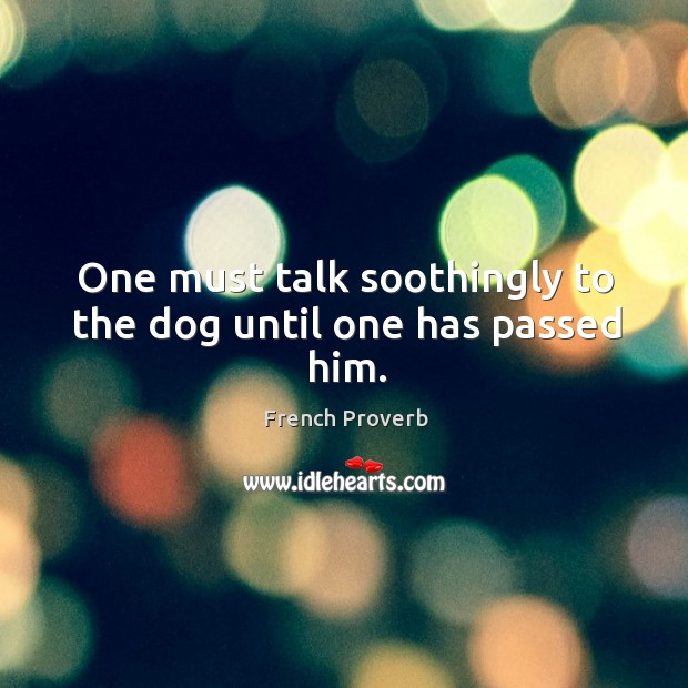 Image, One must talk soothingly to the dog until one has passed him.