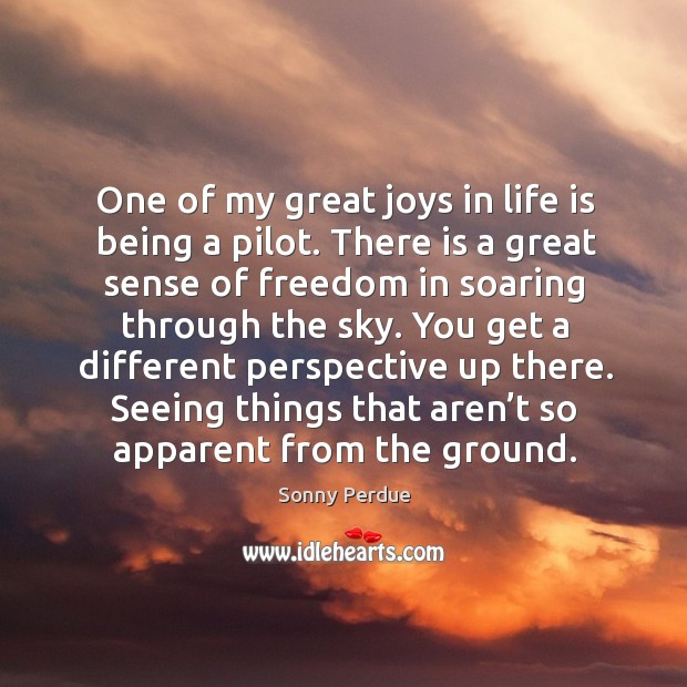 One of my great joys in life is being a pilot. There is a great sense of freedom in soaring Image