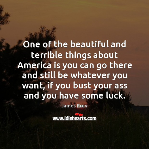 One of the beautiful and terrible things about America is you can James Frey Picture Quote