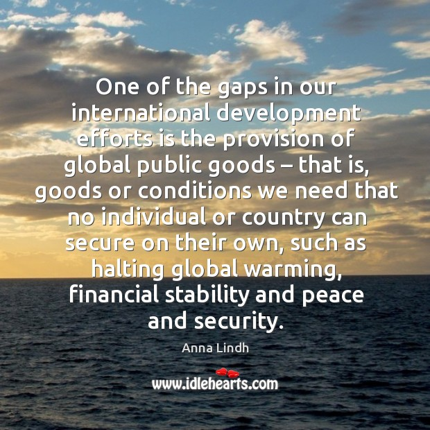 Image, One of the gaps in our international development efforts is the provision