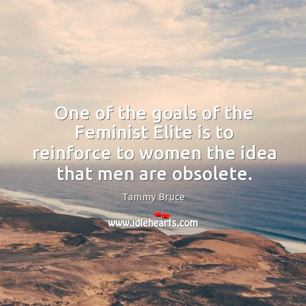 One of the goals of the feminist elite is to reinforce to women the idea that men are obsolete. Image