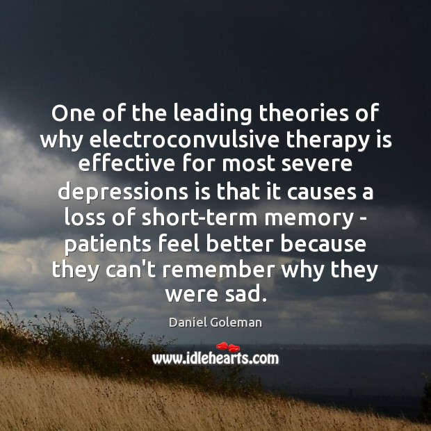 One of the leading theories of why electroconvulsive therapy is effective for Daniel Goleman Picture Quote