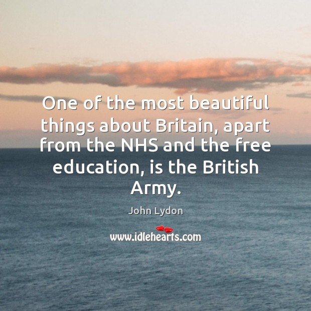 One of the most beautiful things about Britain, apart from the NHS John Lydon Picture Quote