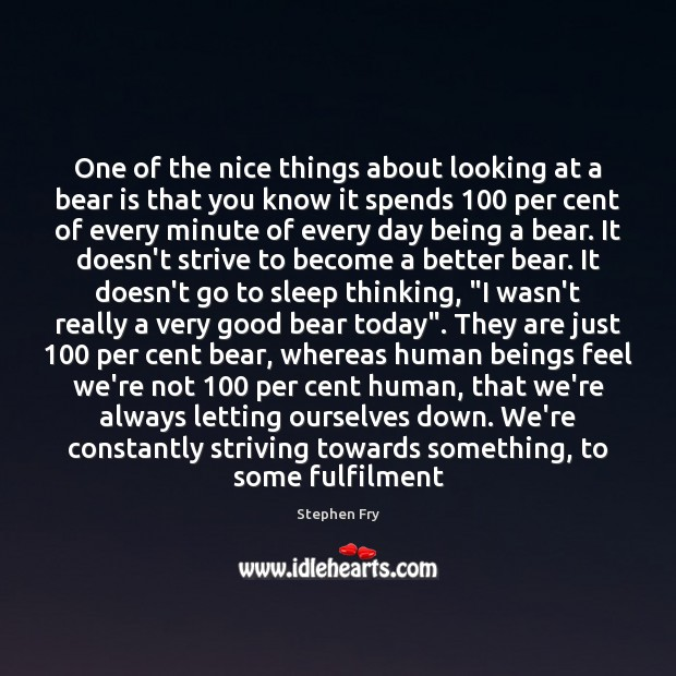 One of the nice things about looking at a bear is that Image