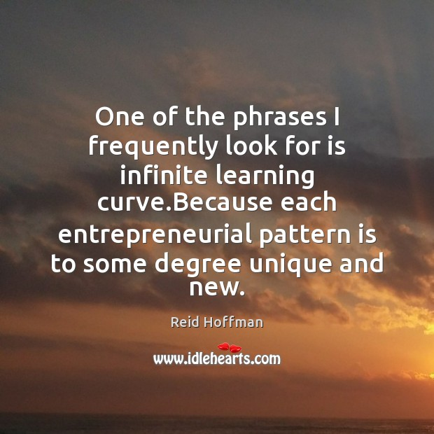One of the phrases I frequently look for is infinite learning curve. Reid Hoffman Picture Quote