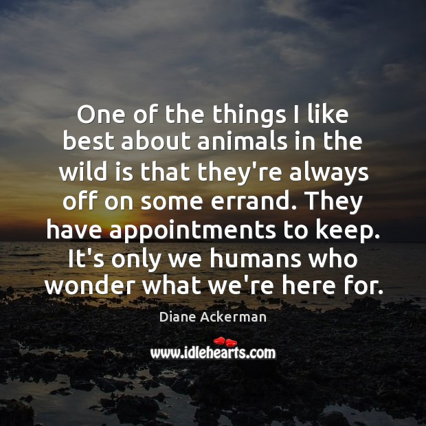 One of the things I like best about animals in the wild Diane Ackerman Picture Quote