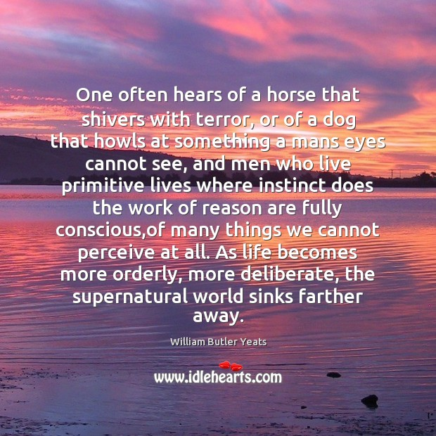Image, One often hears of a horse that shivers with terror, or of