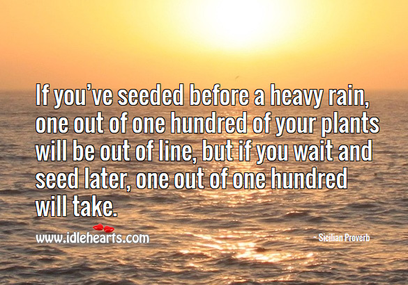 If you've seeded before a heavy rain, one out of one hundred of your plants will be out of line Sicilian Proverbs Image