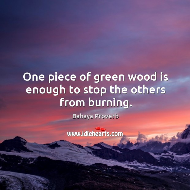 One piece of green wood is enough to stop the others from burning. Bahaya Proverbs Image