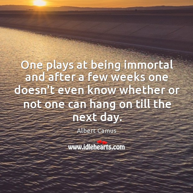 Image, One plays at being immortal and after a few weeks one doesn't