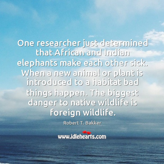 One researcher just determined that african and indian elephants make each other sick. Image