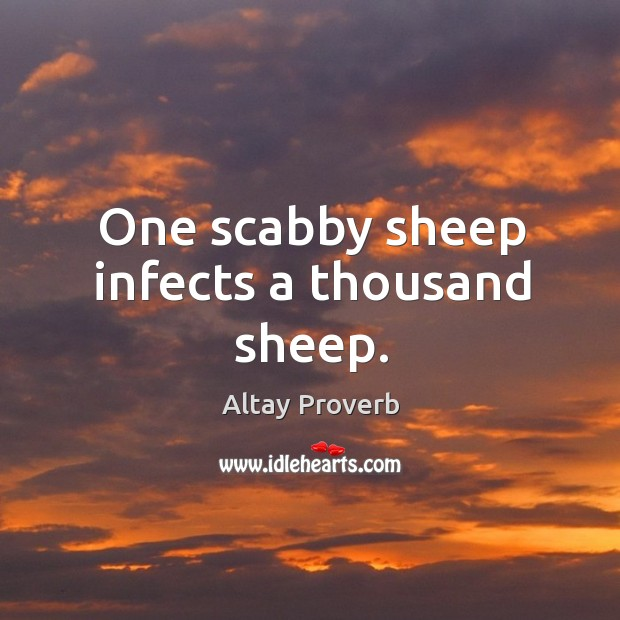 One scabby sheep infects a thousand sheep. Altay Proverbs Image