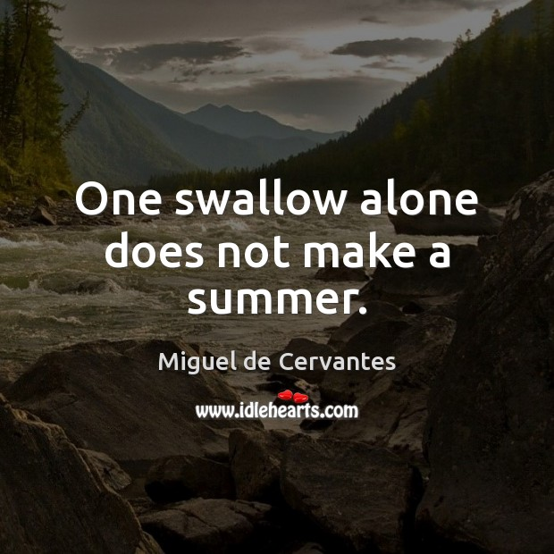 One swallow alone does not make a summer. Image
