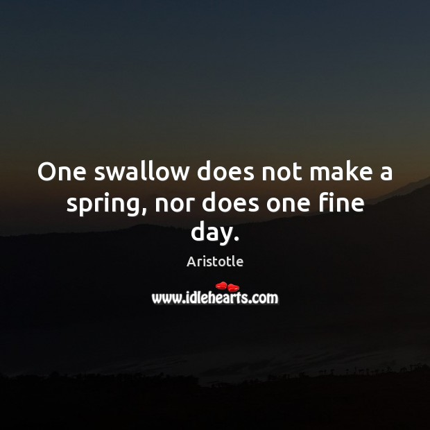 Image, One swallow does not make a spring, nor does one fine day.