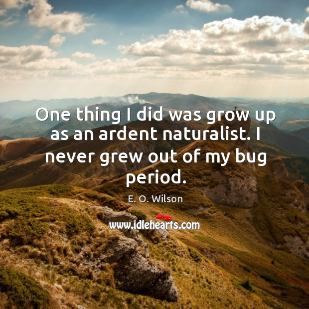 Image, One thing I did was grow up as an ardent naturalist. I never grew out of my bug period.