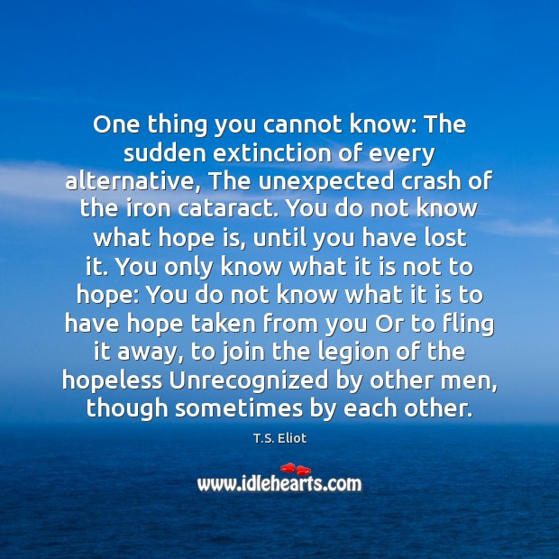 One thing you cannot know: The sudden extinction of every alternative, The T.S. Eliot Picture Quote