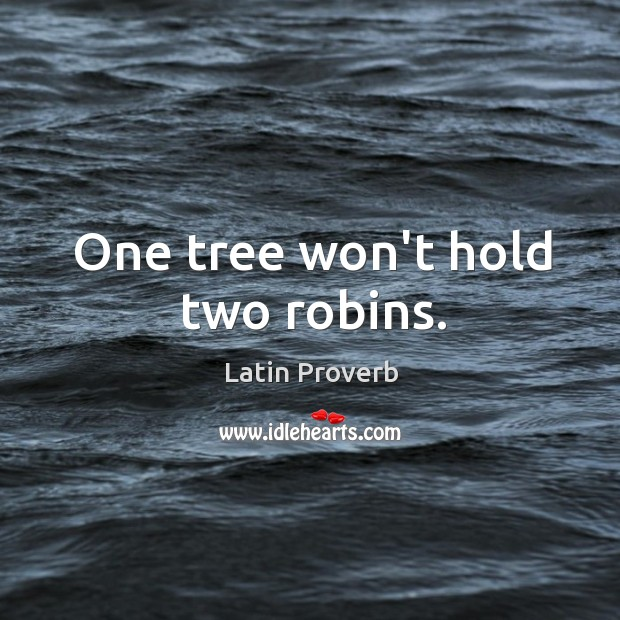Image, One tree won't hold two robins.
