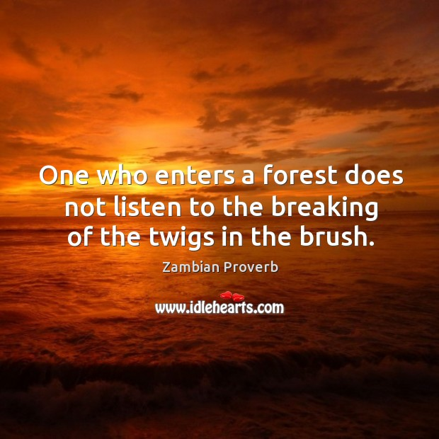 One who enters a forest does not listen to the breaking of the twigs in the brush. Zambian Proverbs Image