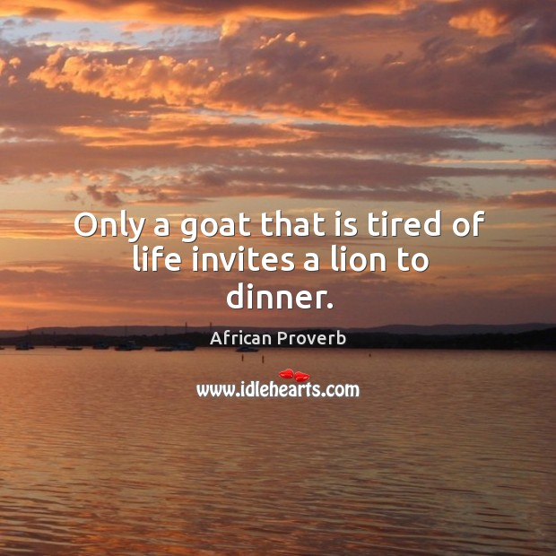 Image, Only a goat that is tired of life invites a lion to dinner.