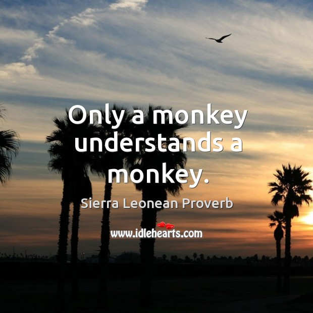 Only a monkey understands a monkey. Sierra Leonean Proverbs Image