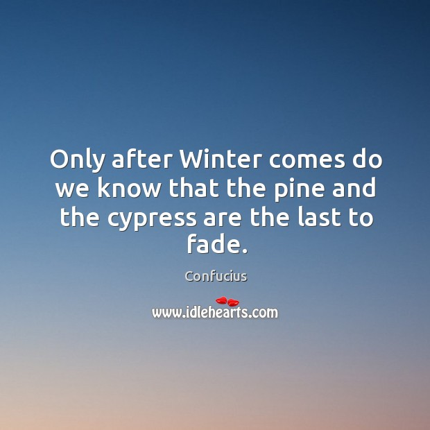 Image, Only after Winter comes do we know that the pine and the cypress are the last to fade.