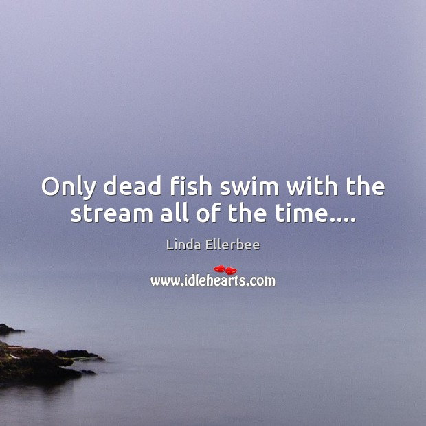 Image, Only dead fish swim with the stream all of the time….