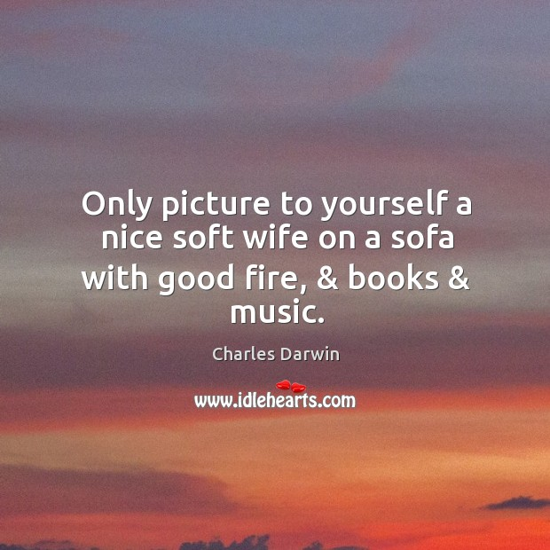 Image, Only picture to yourself a nice soft wife on a sofa with good fire, & books & music.