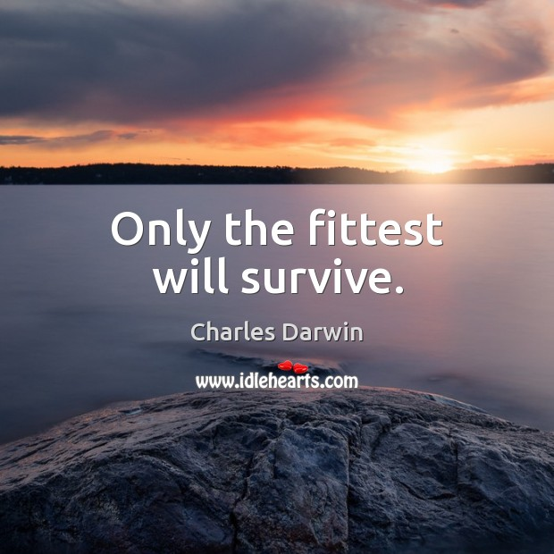 Only the fittest will survive. Charles Darwin Picture Quote