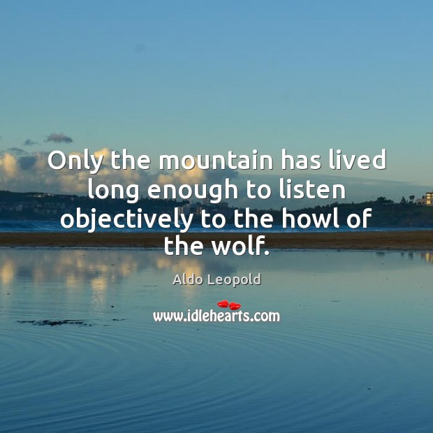 Image, Only the mountain has lived long enough to listen objectively to the howl of the wolf.