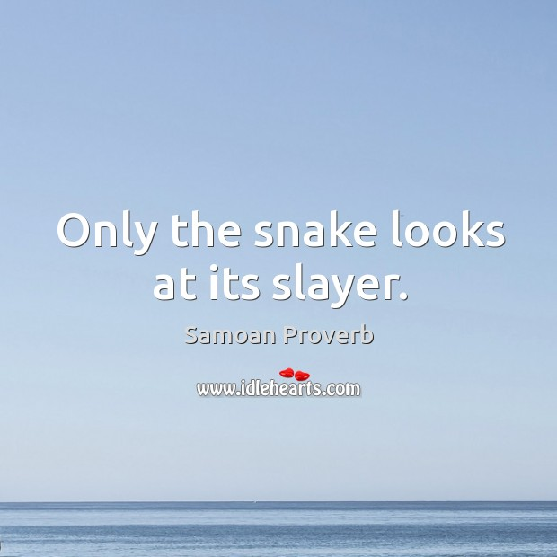 Only the snake looks at its slayer. Samoan Proverbs Image