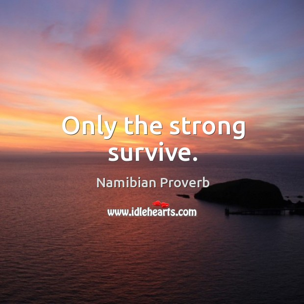Only the strong survive. Namibian Proverbs Image