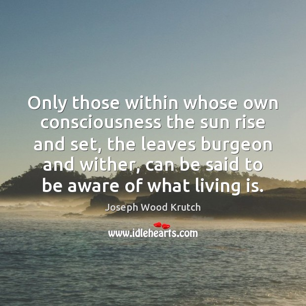 Only those within whose own consciousness the sun rise and set, the Joseph Wood Krutch Picture Quote