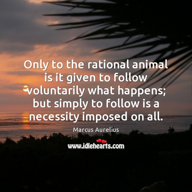 Only to the rational animal is it given to follow voluntarily what Marcus Aurelius Picture Quote