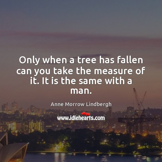 Only when a tree has fallen can you take the measure of it. It is the same with a man. Anne Morrow Lindbergh Picture Quote