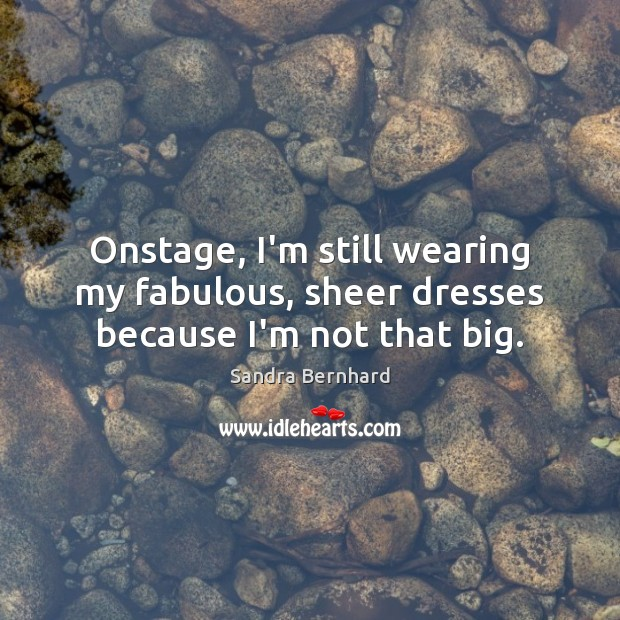 Onstage, I'm still wearing my fabulous, sheer dresses because I'm not that big. Sandra Bernhard Picture Quote