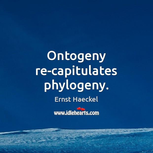 Image, Ontogeny re-capitulates phylogeny.