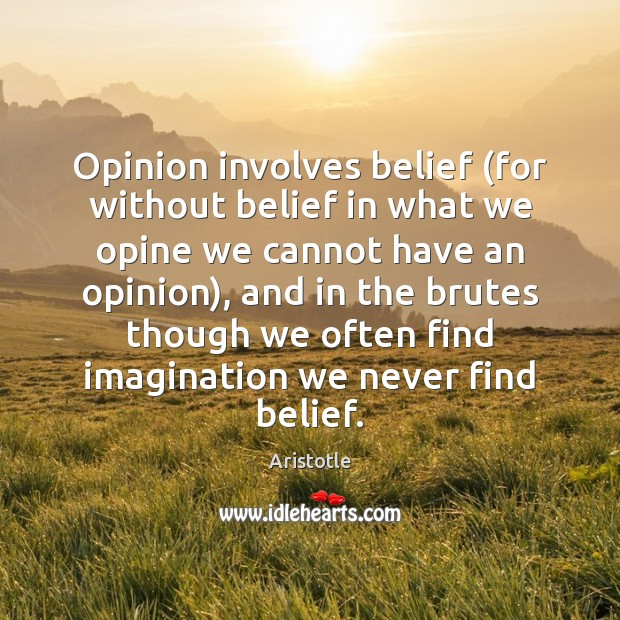 Image, Opinion involves belief (for without belief in what we opine we cannot