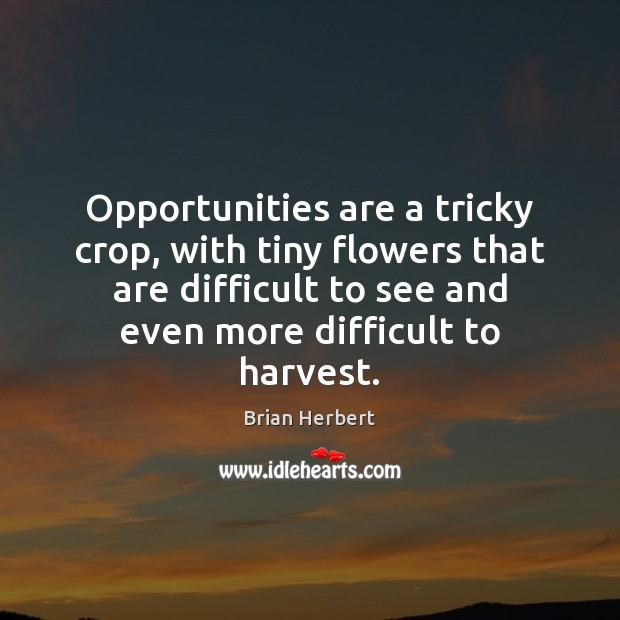 Opportunities are a tricky crop, with tiny flowers that are difficult to Brian Herbert Picture Quote