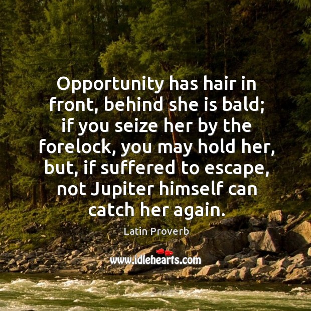 Opportunity has hair in front, behind she is bald. Latin Proverbs Image