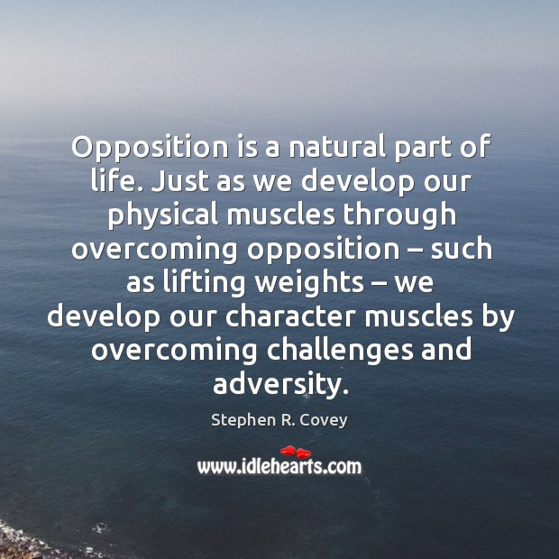 Opposition is a natural part of life. Just as we develop our physical muscles through overcoming opposition Image