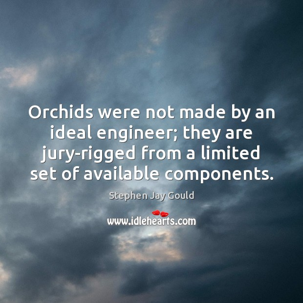 Orchids were not made by an ideal engineer; they are jury-rigged from Image