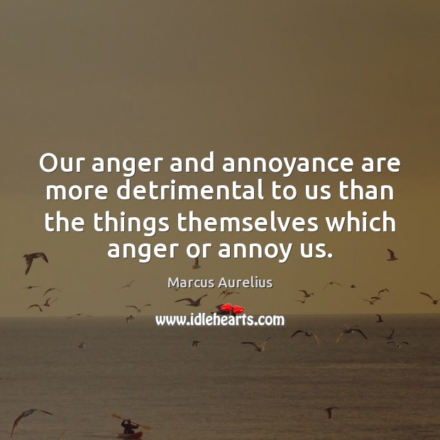 Image, Our anger and annoyance are more detrimental to us than the things