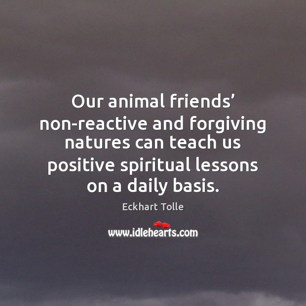 Image, Our animal friends' non-reactive and forgiving natures can teach us positive spiritual