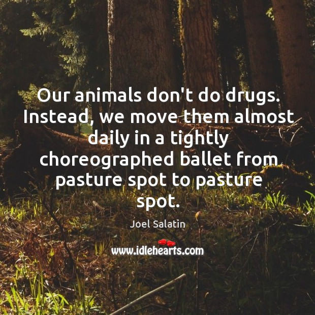 Our animals don't do drugs. Instead, we move them almost daily in Joel Salatin Picture Quote
