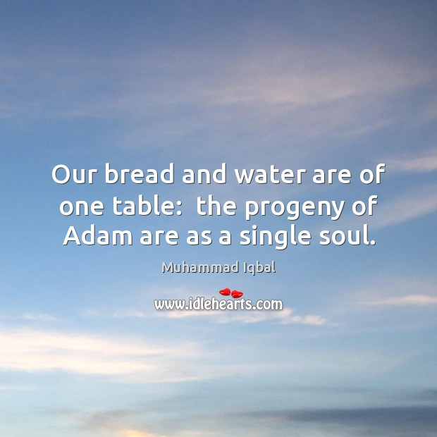 Our bread and water are of one table:  the progeny of Adam are as a single soul. Image