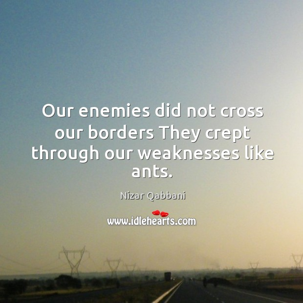 Our enemies did not cross our borders They crept through our weaknesses like ants. Image