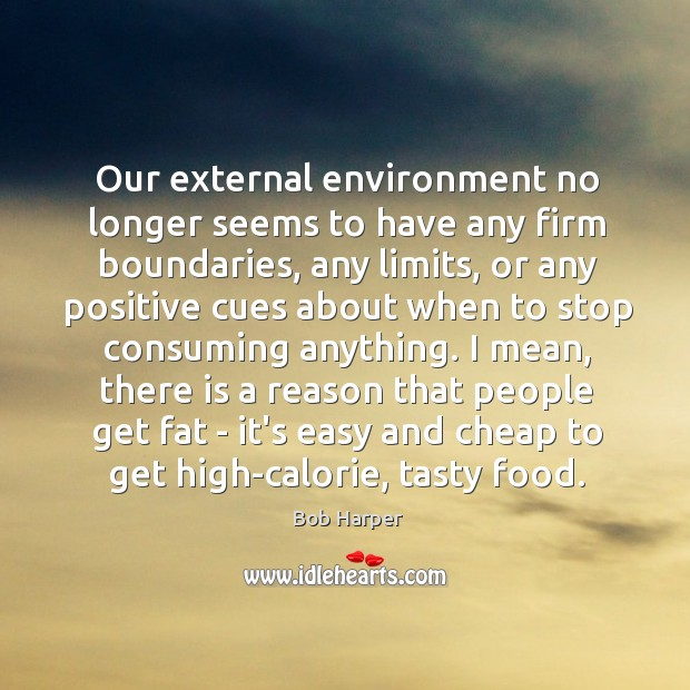 Our external environment no longer seems to have any firm boundaries, any Bob Harper Picture Quote