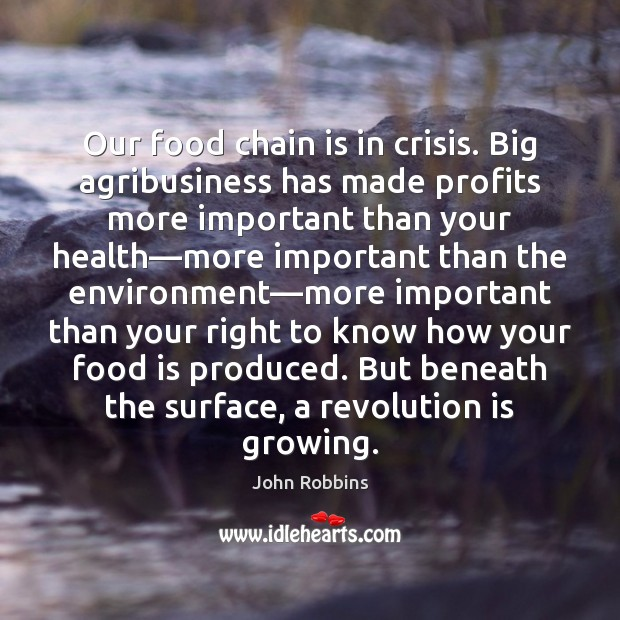 Our food chain is in crisis. Big agribusiness has made profits more John Robbins Picture Quote