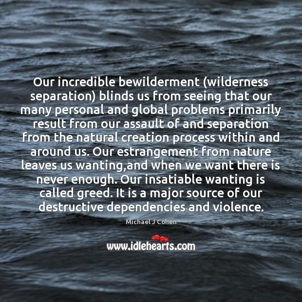 Image, Our incredible bewilderment (wilderness separation) blinds us from seeing that our many