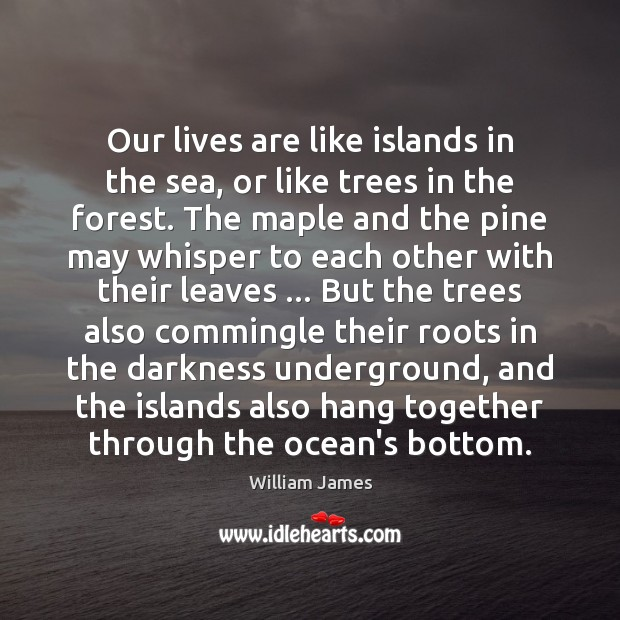 Our lives are like islands in the sea, or like trees in Image